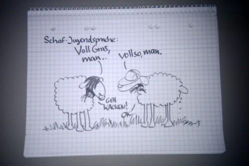 Schafe stehen auf einer Wiese und fressen Gras und reden und kacken.